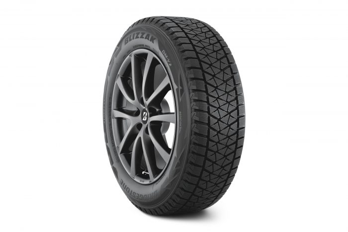 Bridgestone Blizzak DM-V2 1